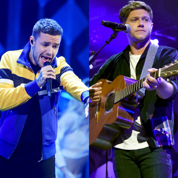 Liam Payne and Niall Horan were on the same stage but separately during the kick off of iHeartRadio's first Jingle Ball in Dallas, Texas. The former One Direction bandmates both performed their hits in addition to The Chainsmokers, Camila Cabello and Kesha.