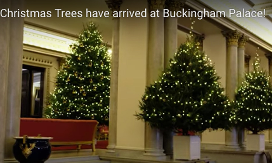 royals get in the holiday spirit check out their christmas cards decorations and trees - Queen Christmas Decorations