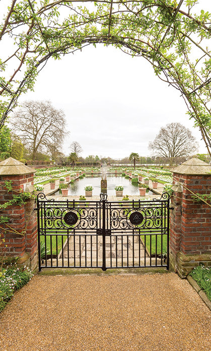 HONORING ENGLAND'S ROSE