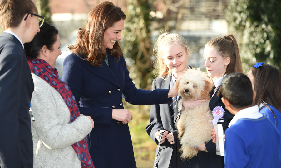 One day after her 36th birthday, Kate Middleton carried out her first engagement of 2018 at the Reach Academy with Place2Be on January 10. During her visit, Kate took some time to play with Bear, one of the therapy dogs in training at the school.