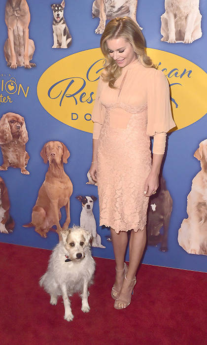Rebecca Romijn was joined by a very well-behaved pal at the 2018 American Rescue Dog Show at Pomona Fairplex in Pomona, California.