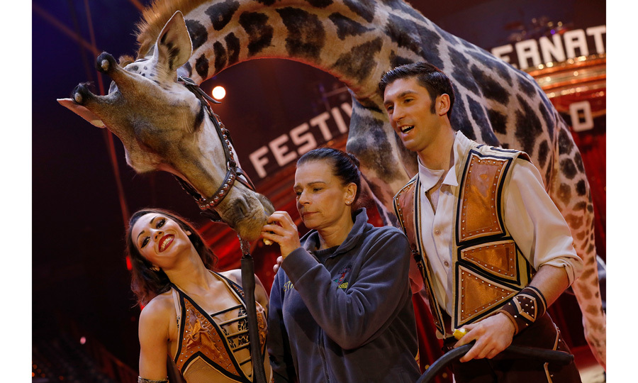 Princess Stephanie of Monaco made a friend during the 42nd International Circus Festival in Monte-Carlo on January 16. Grace Kelly's daughter, who once traveled with a circus, was pictured feeding a giraffe while at a photocall for the event.