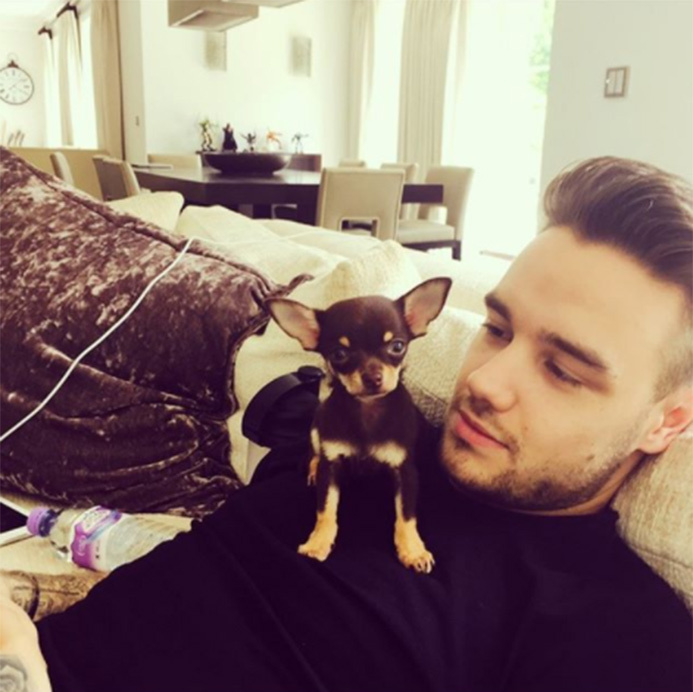 Liam Payne is seen here chilling out at the light-flooded home he shares with his partner Cheryl and their adorable pup. Take a look behind him and you'll see a large wood dining table with cream chairs, and a set of quirky figurines on the dresser by the wall.