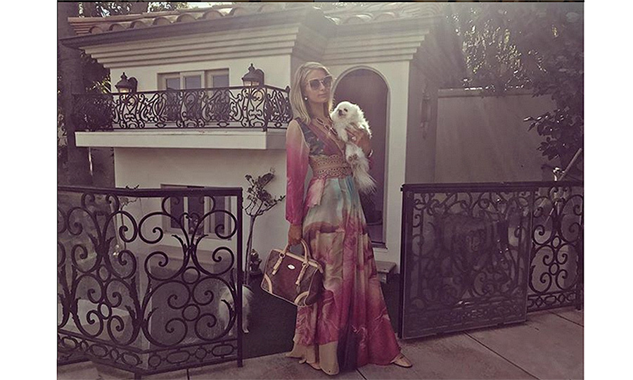 Paris Hilton reminds us that yes, there are even #goals when it comes to dog houses. The heiress' pampered pooches famously live in a multi-storey doggie mansion in the grounds of her home.