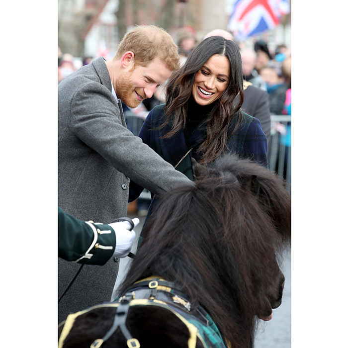 While in Edinburgh, Prince Harry and Meghan Markle met Shetland pony Cruachan, the mascot of the Royal Regiment of Scotland. When the cuddly-looking pony made a quick move toward the Prince for what appeared to be a nip, Meghan couldn't help but burst out laughing along with her future husband.