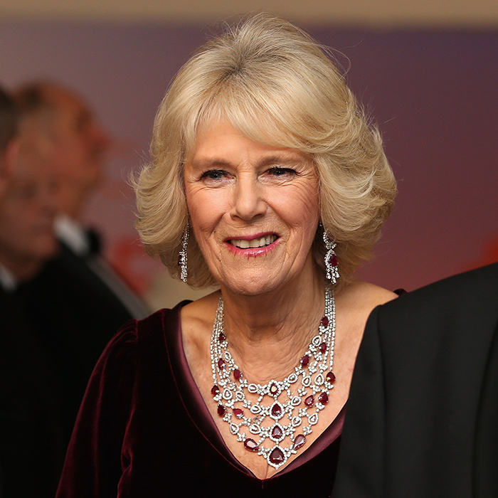 Diamond and Ruby Semi-Parure