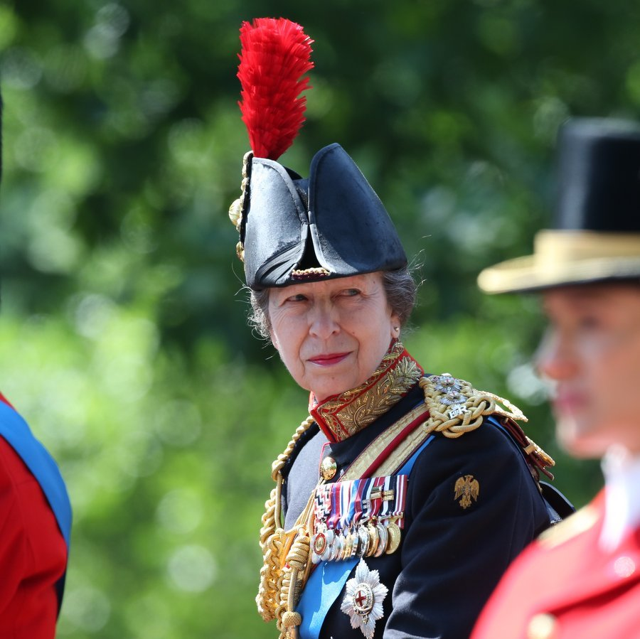 Princess Anne, the Queen's only daughter, holds a number of honorary military appointments, and was looking sharp in her military uniform and red-plumed hat. 